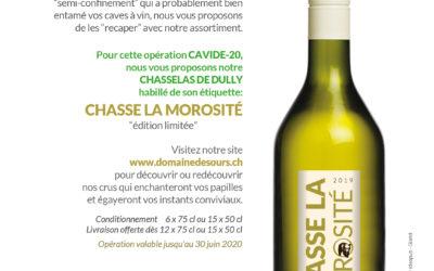 Promotion CAVID-20 / Chasse la Morosité